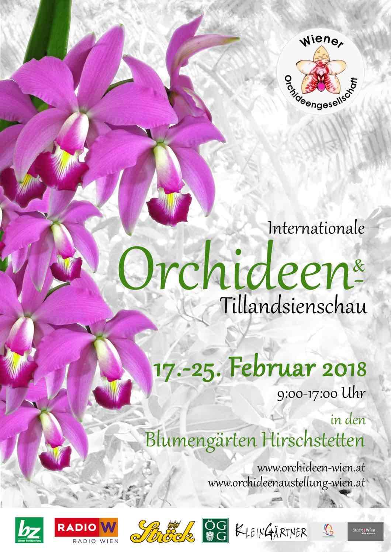 Plakat der Orchideenausstellung Orchideen Ausstellung Hirschstetten Wien 2018