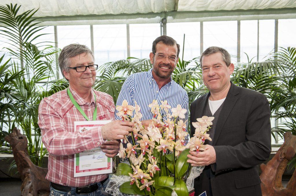 Orchideentaufe